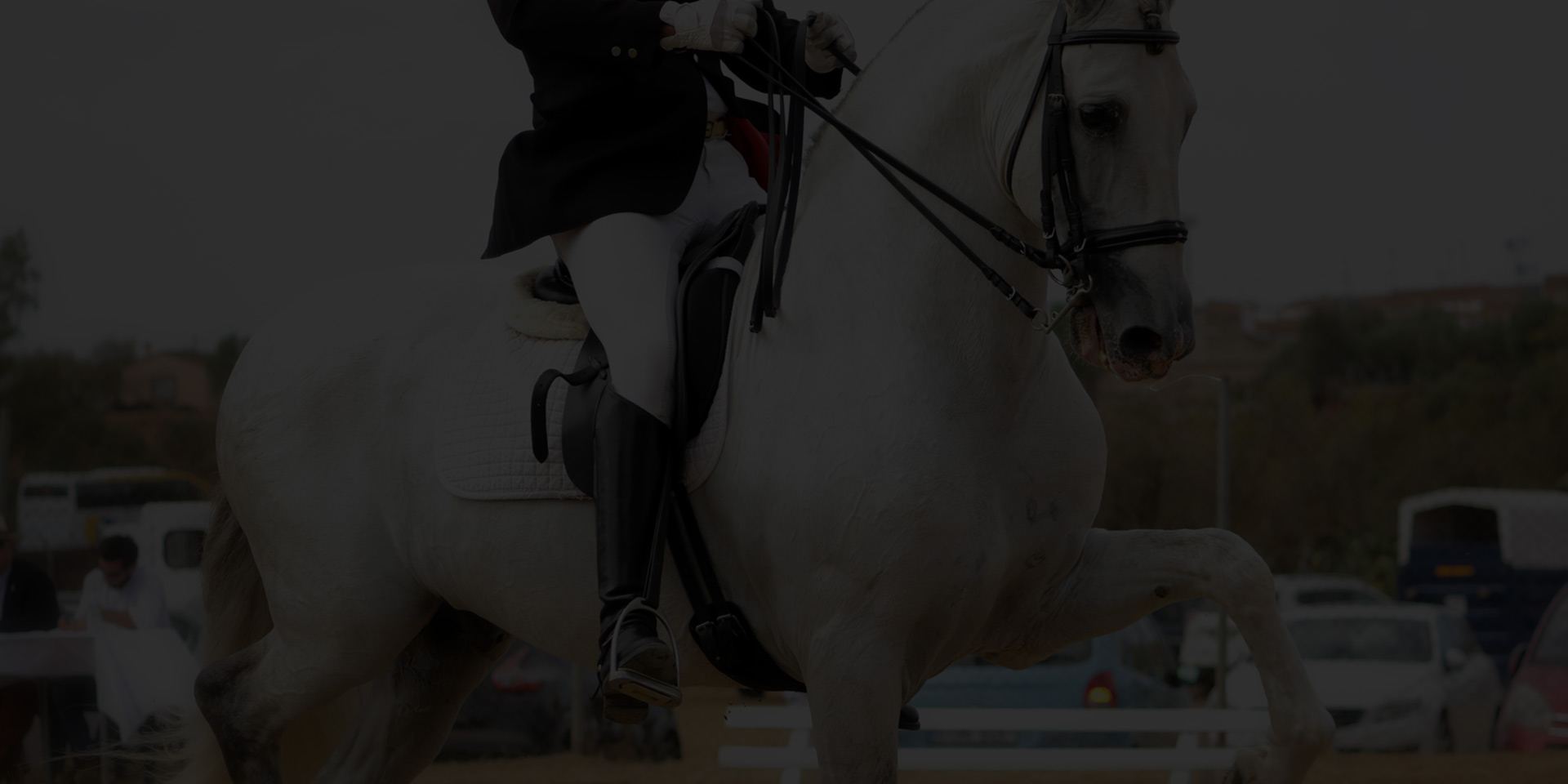 monde-equestre