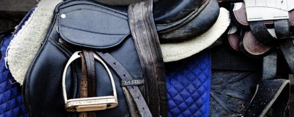 Achat de matériel pour équitation