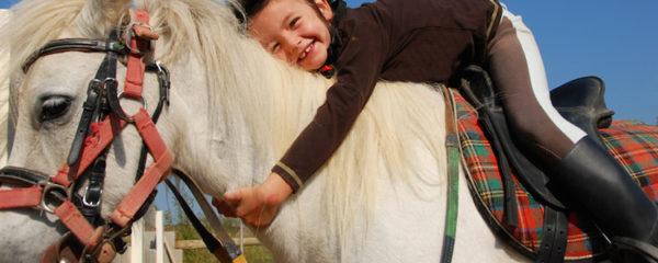 licols pour chevaux