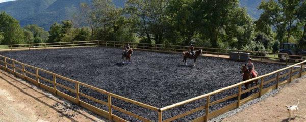 dalles pour sols équestres